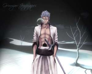 Grimmjow-photos-grimmjow-jeagerjaques-7147814-1024-819