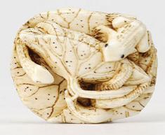 Slug-Snake-Toad